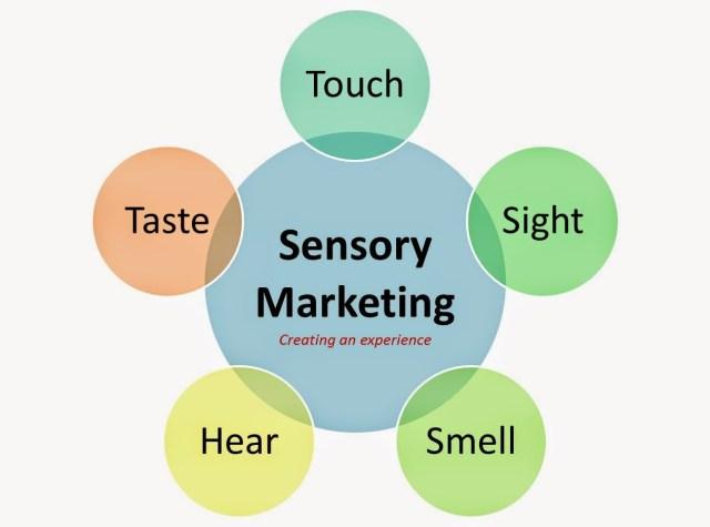 sensory-marketing