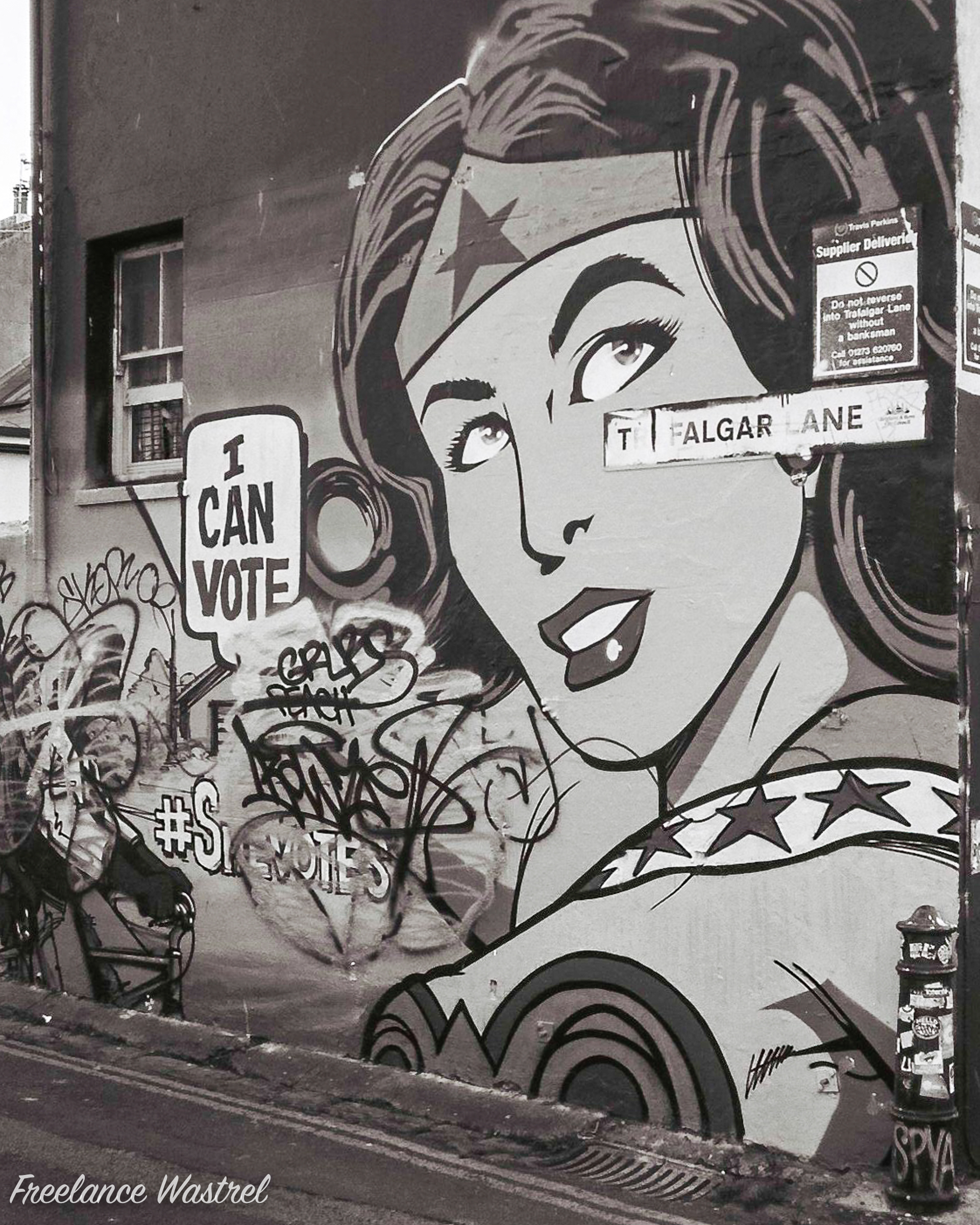 I Can Vote, Brighton, November 2017