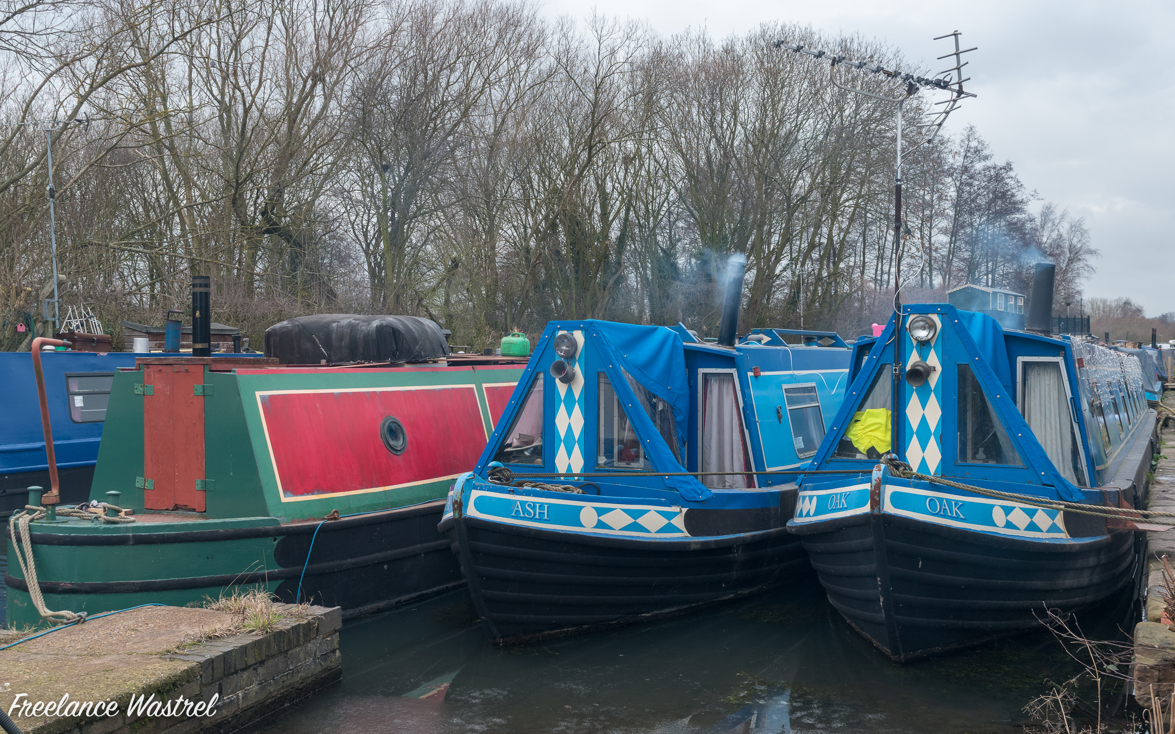 Narrow boats, Langley Mill, February 2019