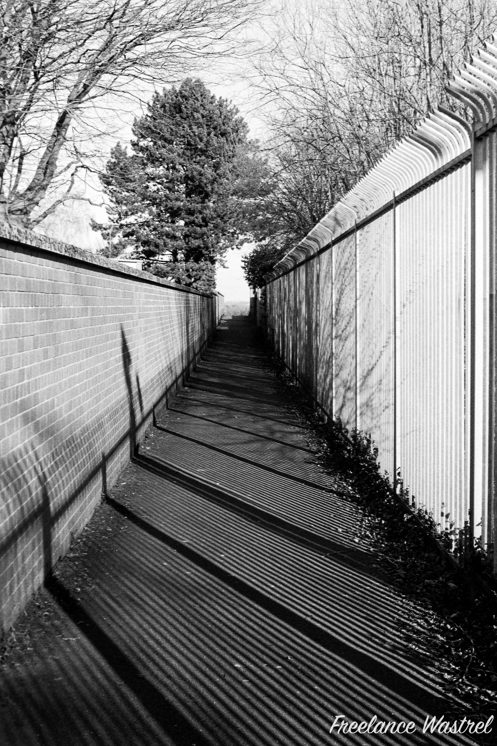 Barcoded path