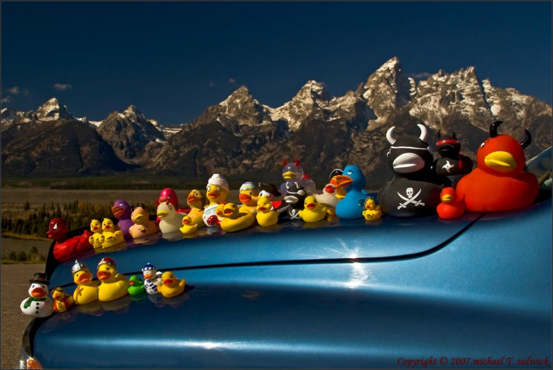 The Duckies enjoying the Grand Tetons