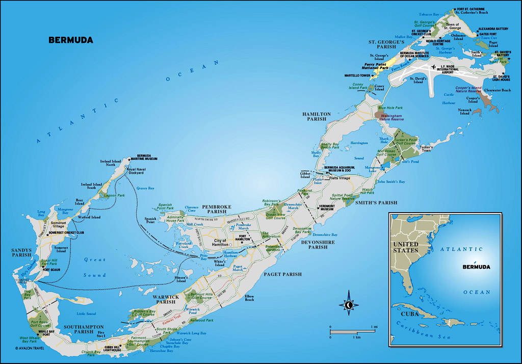 Bermuda Cruise netliuying39s space