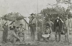 Image result for Florida civil war