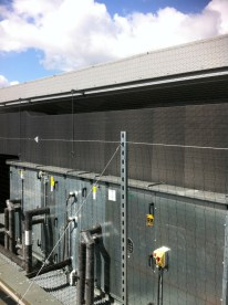 pigeon netting 001 765x1024 - Pigeon Spikes, Bird Netting & Tensioned Wires, Installation, London