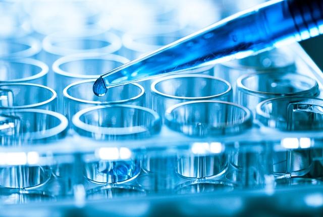 Xencor to develop novel IL-15 cytokine therapeutics with Genentech