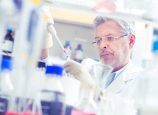 Immunicum evaluating cancer combo with Merck & Pfizer