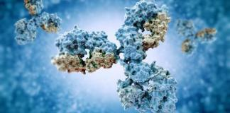HiFiBiO partners with renowned scientist on antibody treatments for cancer