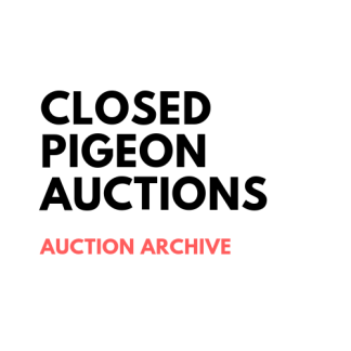 z_Closed Auctions
