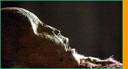 Mummy 13