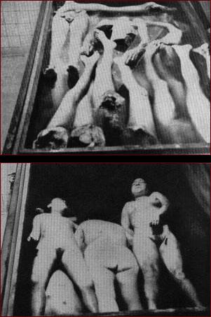 holocaust prostitution