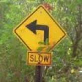 assumptions slow