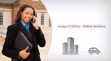 Avaya-Office-Worker Dubai