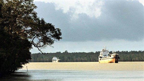 Sundarban islands