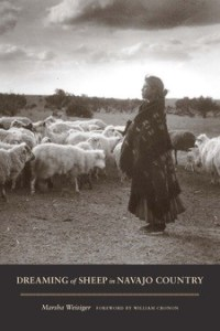 Dreaming of Sheep in Navajo Country cover