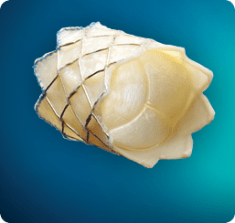 medtronic melody heart valve