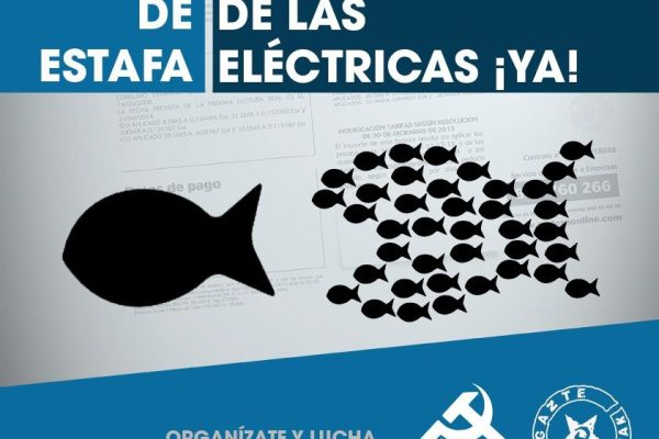 Movilizaciones el 21 de diciembre por la nacionalización de las empresas eléctricas