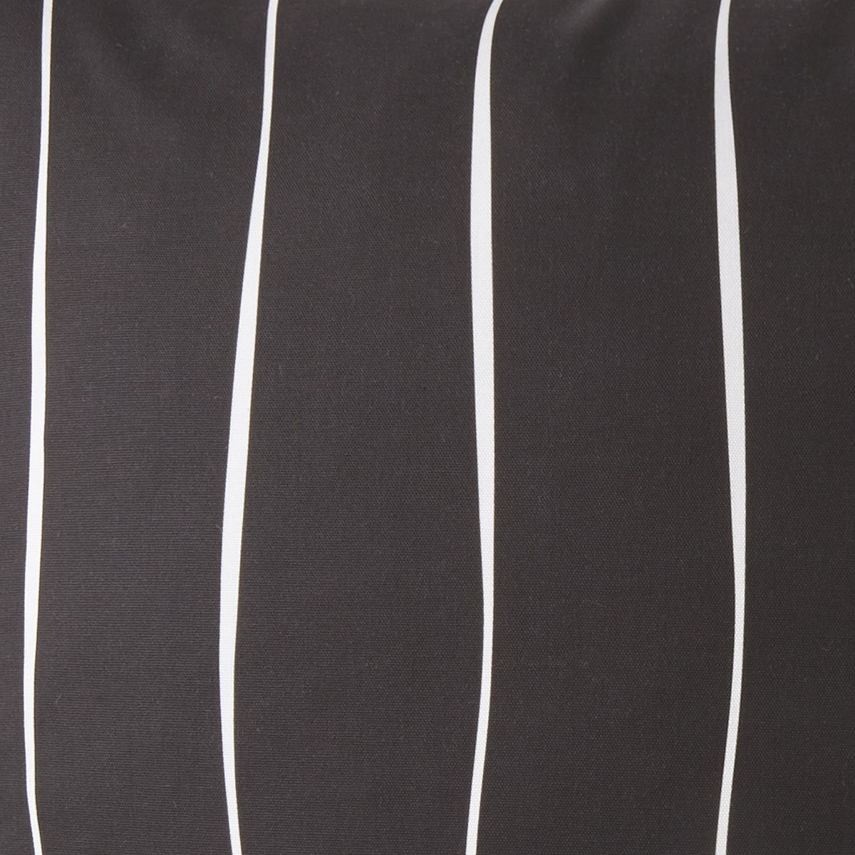 Toile Back In Black Bedskirt 15 Drop King By Colcha