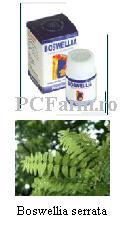 Boswellia (Articulatii) - PCFarm.ro