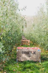 Broetje Orchards
