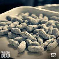 walking dead nuts מתים מהלכים