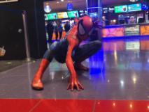 ספיידרמן אל מימד העכביש 5