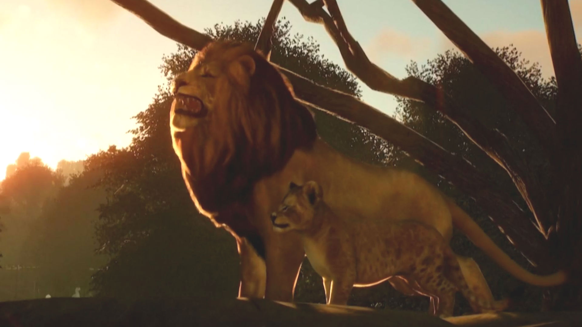 Planet Zoo Will Focus On Animal Welfare And Conservation