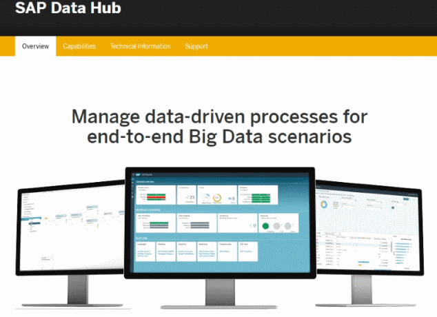SAP Data Hub New