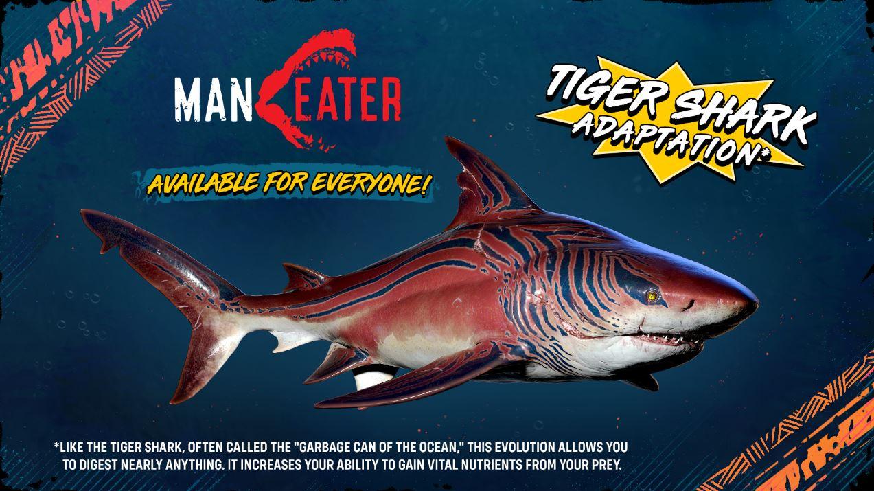 tiburón tigre Maneater