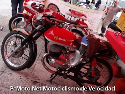 Sardinero-2012- 004