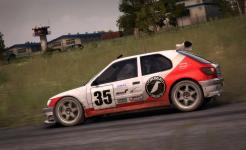 DiRT_Rally_Peugeot_306_Maxi_1_1435309129