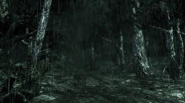 1438902877-downpour-original-2