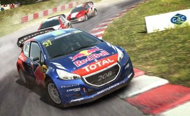 DiRT_Rally_Peugeot_RX_Holjes_02