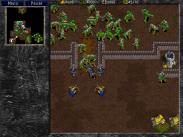Warcraft_II_13