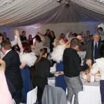 Wedding dj - dj for birthday - wedding entertainment