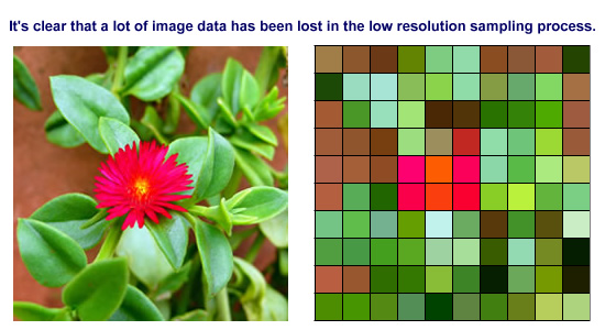 Resolutions When Sampling Digital Images with Scanners or Using Digital Cameras