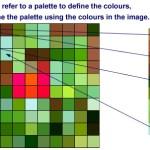 flower_grid-palette.jpg