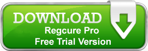 regcrue-download-button