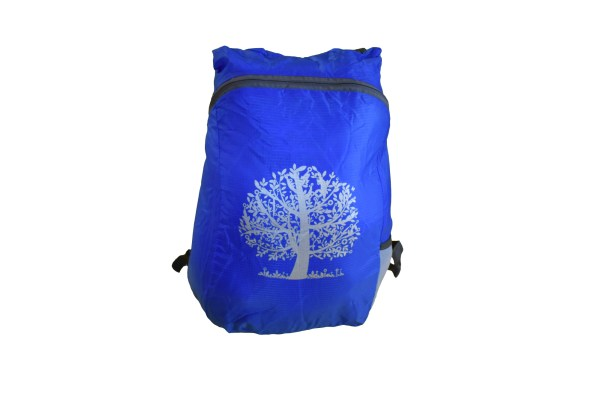 full pocket sized backpacking day pack