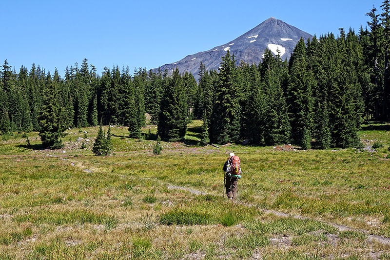 pct-pacific-crest-trail-meadow-three-sisters-wilderness-hiker-hiking-oregon-pctoregon.com