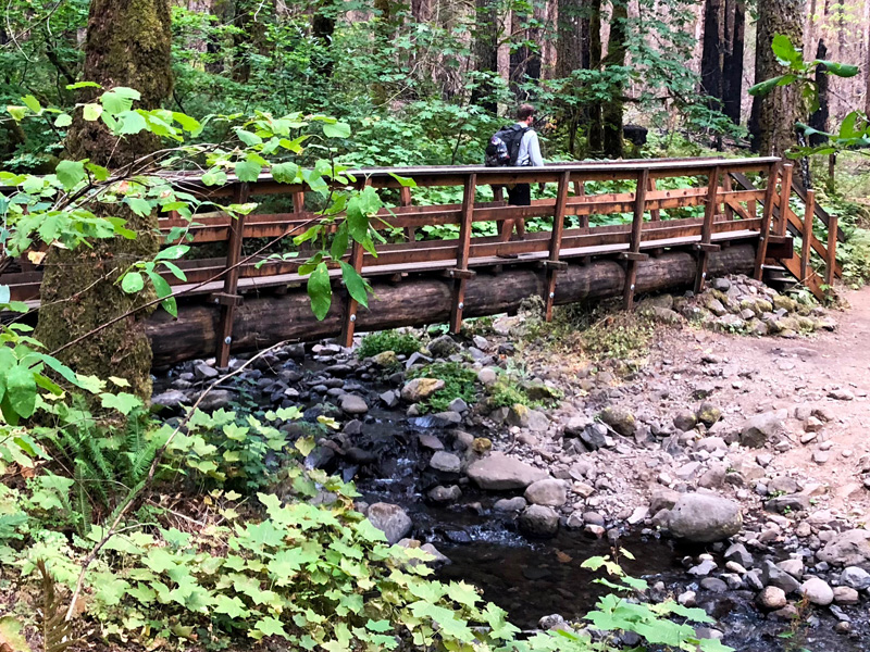 ramona creek