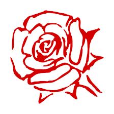 Dibujo Rosa | Vectores de dominio público