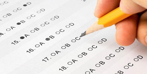 in questa immagine c'è una matita che compila un questionario