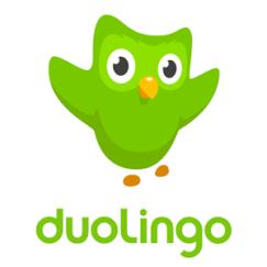 gufo verde con ali alzate logo di duolingo