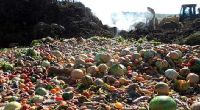 """Spreco alimentare, Piloni (PD): """"Meno spreco, meno tasse. Un altro metodo per affrontare anche l'emergenza ambientale"""""""