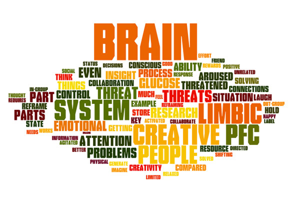 Part 2 Want To Be More Creative Understanding How Your Brain Works Can Help Pdd