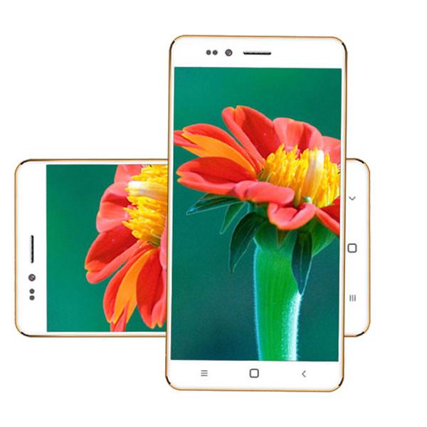 Ringing Bells Freedom 251 Smartphone Full Specification