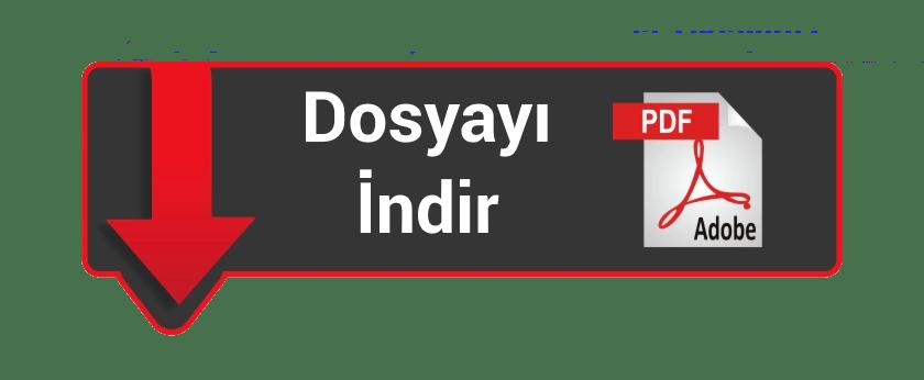 Jose Saramago - Görmek PDF indir 1 | dosya indir logo