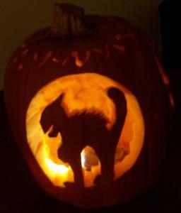 Jack-o-Lantern - Cat