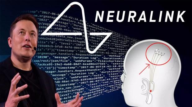 Elon Musk habría usado Neuralink para hacer que un mono jugara videojuegos  »Hablemos de videojuegos