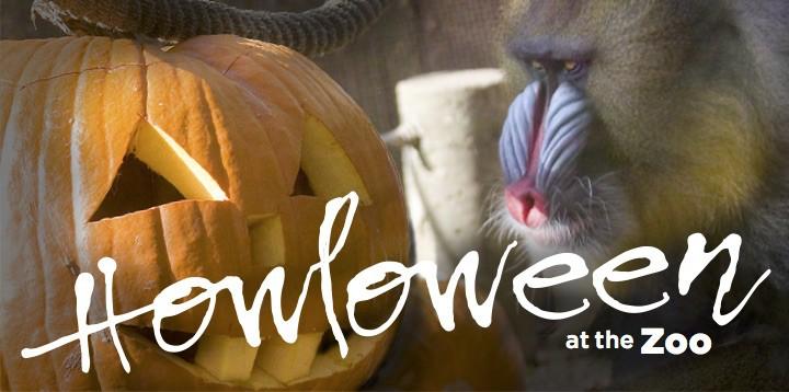 oreogn-zoo-howloween-giveaway